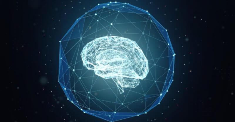 How your brain learns how your brain learns