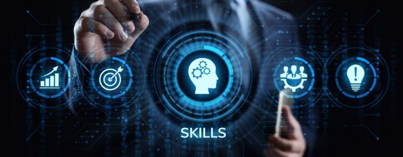 Training and assessment - skill sets training and assessment skill set